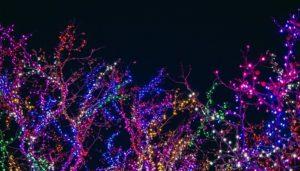 Vancouver Washington Christmas Lights